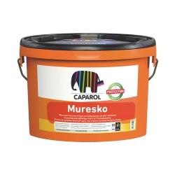 COLOREXPRESS MURESKO - LT.10